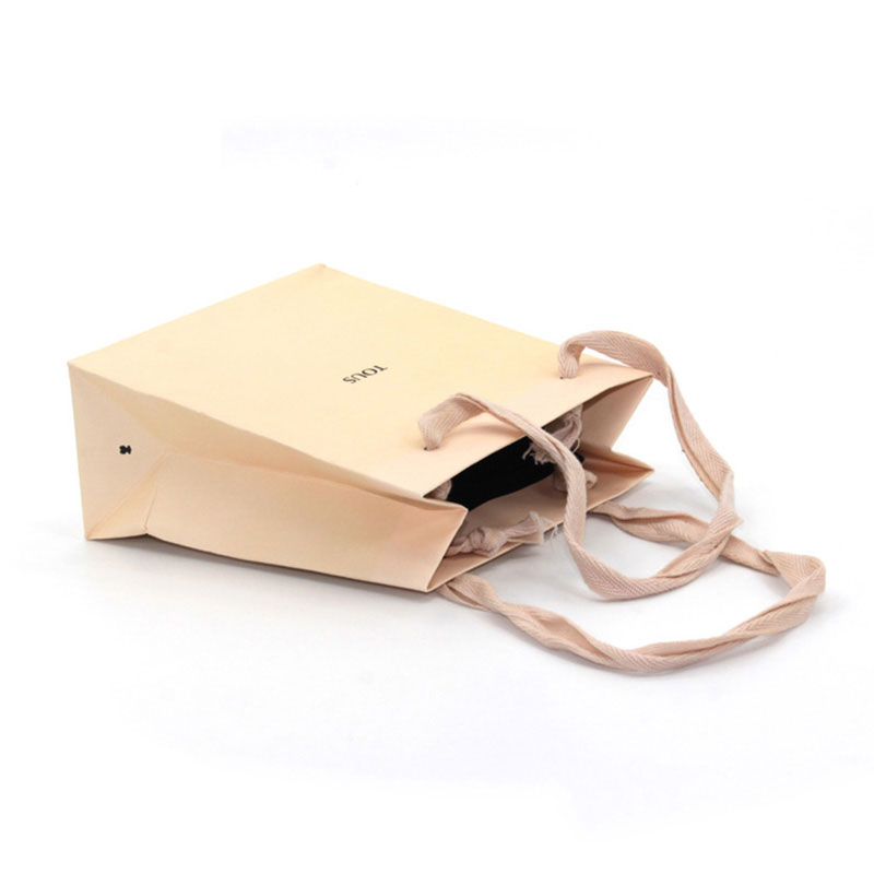 High Quality Eco Friendly Fashion Shopping Small Paper Bag