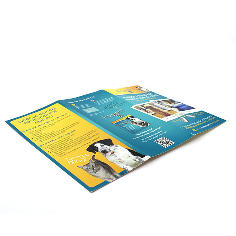 Factory Custom Eco Friendly Paper Catalogue Printing Brochure